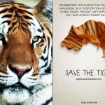 Tiger Edition Sponsor - Save the Tigers